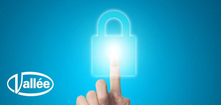 Vallée | Segurança da Informação